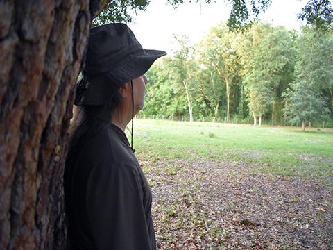Lawrence W. Moore Oak Tree Profile